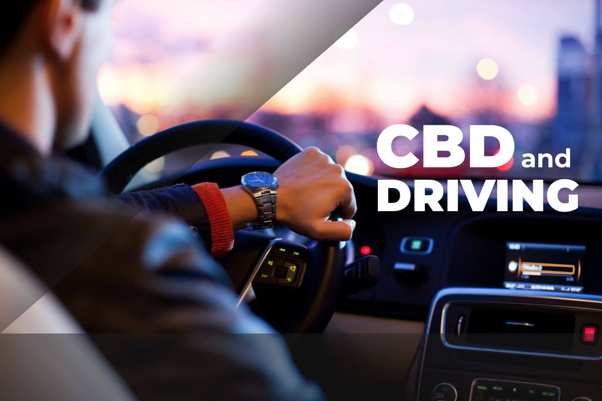 driving with cbd