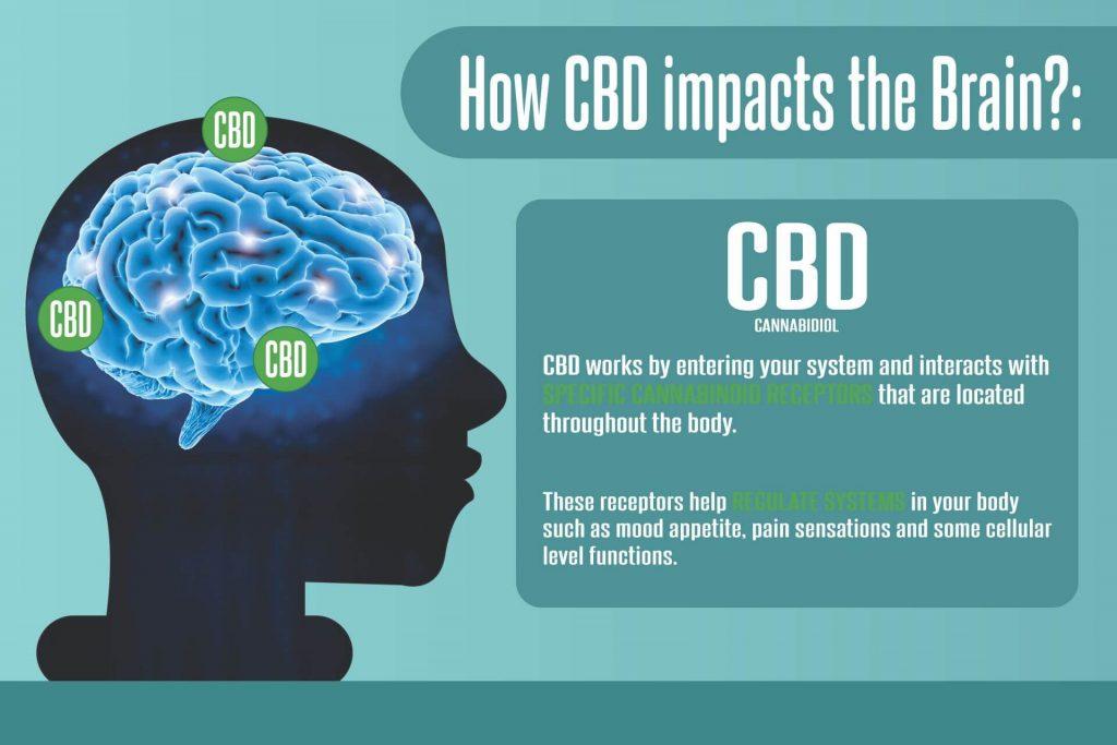 how cbd impact the brain